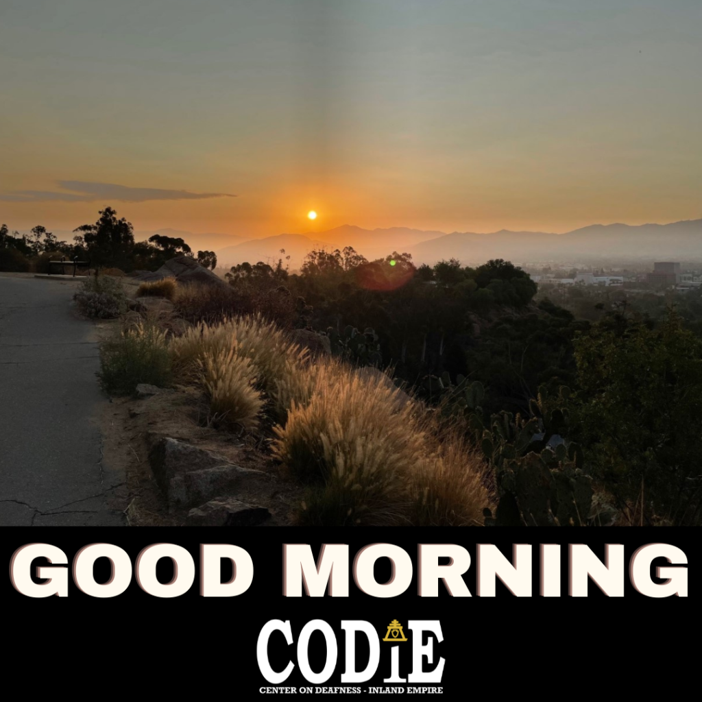 Good Morning from CODIE. #goodmorning #thursdaymorning #codie_riv [Image description: Orange sun rising over the mountains - Riverside city in sight on the right. Foreground of the hiking trail at Mt. Rubidoux.]